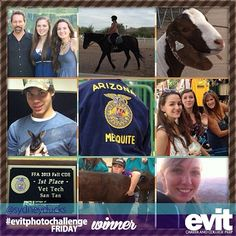 Congratulations to Sydney for being one of the winners for the latest #evitphotochallenge! She is thankful for her love for animals, family and friends.