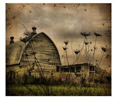 View of the queens - Rural abandoned barn -  fine art