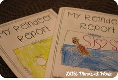 Nonfiction Reindeer Report {FREEBIE}: blog post includes lessons for several days, geared toward kindergarten, but adaptable for first or second grade