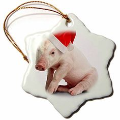 3drose Christmas Pig Snowflake Porcelain Ornament, 3-Inch ** Click on the image for additional details.