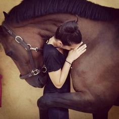 Horse hug.