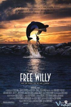 Giải Cứu Willy - HD