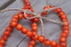 askartelua Plant Crafts, Crafts To Make, Crafts For Kids, Arts And Crafts, Diy Crafts, Autumn Crafts, Autumn Art, Nature Decor, Nature Crafts
