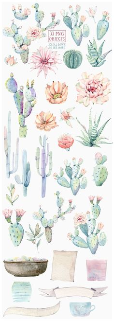 CACTUSES again and again by Lemaris on @creativemarket #watercolor