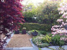 landscape design oakland hills ca | ... : Residential Commercial Retreats Garden Elements Design Process