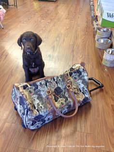 Traveling for the holidays? Look put together and dog-chic with this modern take on the old-fashioned antique tapestry carpetbagger luggage. Carry it as a bag or easily convert it into a pull with wheels. River approves. #bag #doggifts #gifts #doglover