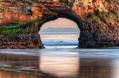 Natty Bridges makes the list of our top beaches in America!