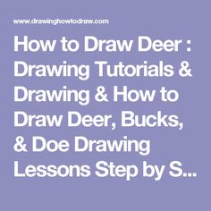 How to Draw Deer : Drawing Tutorials & Drawing & How to Draw Deer, Bucks, & Doe Drawing Lessons Step by Step Techniques for Cartoons & Illustrations & Sketching