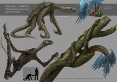 Evolution Project - Low Gravity Earth, Dan Iorgulescu