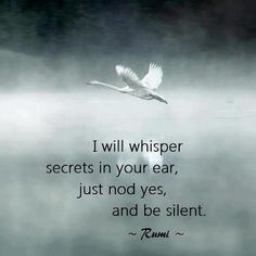 """""""I will whisper secrets in your ear, just nod yes, and be silent."""" Rumi"""