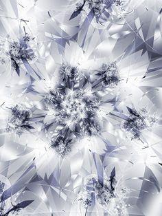 winter pictures | Enjoy the Collection of Inspiring Winter Motifs! | 3D Models, Website ...
