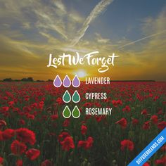 Lest We Forget - Essential Oil Diffuser Blend