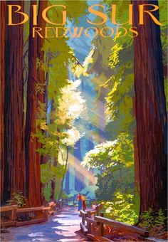 Big Sur California Coast Redwoods United States Travel Advertisement Art Poster in Posters Muir Woods National Monument, Big Sur California, California Coast, Vintage California, California Travel, Retro Poster, Vintage Travel Posters, Poster Poster, National Park Posters