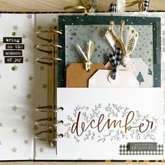 Mini Albums, Mini Scrapbook Albums, Scrapbook Paper, Christmas Scrapbook Layouts, Scrapbooking, December Daily, Project Life, Embellishments, Card Making