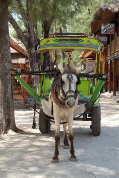 A local taxi in lombok Bali Lombok, Komodo Island, Gili Island, Gili Trawangan, Sri Lanka, Java, Philippines, Voyage Bali, Gili Air