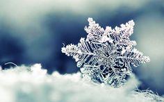 45 great snowflake wallpaper images winter time winter landscape rh pinterest com