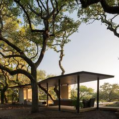 Murray Legge Architecture has shaped the roof of this pool-side pavilion to navigate around the twisting trunks of oak trees on a site in East Texas. Find out more on dezeen.com/architecture #architecture #pavilion #Texas Photograph by @leonidafurmansky.