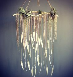 Wouldn't this be a cool backdrop for a cake? Branch, hanging feathers and airlants. Add more color maybe some small dream catchers.