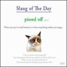 #slang #verbs #voc #ELT