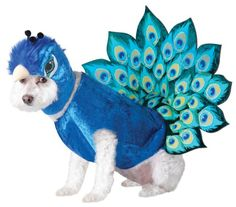 Animal Planet Peacock Dog Costume, Medium, Multicolor Animal Planet http://www.amazon.com/dp/B007ZU8XQ6/ref=cm_sw_r_pi_dp_C.dfxb1TYRTQA 80 each