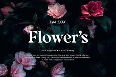 Modern Serif Fonts, Serif Typeface, Best Web Design, Editorial Design, Geometric Shapes, Wild Flowers, Flower Arrangements, Branding Design, How To Memorize Things