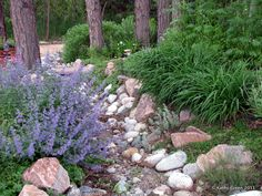 Lawn Be Gone: dry river bed and wildflowers