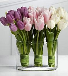 Love the colors together and the way they wrapped the tulips in the clear vase!