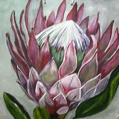 Proteas Acrylic Flowers, Watercolor Flowers, Watercolor Art, Painting Flowers, Protea Art, Protea Flower, Blue Flower Wallpaper, Watercolor Projects, Floral Wall Art
