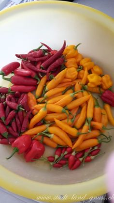 Ronny is telling you:'Chili Ernte scharf - Habaneros und andere Chilis aus dem eigenen Garten' Chilli Plant, Fruits And Vegetables, Carrots, Stuffed Peppers, Bell Pepper, Chilis, Food, Recipes, Stuffed Pepper