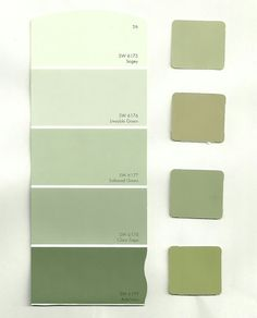Sage Green Paint Colors Sherwin Williams We Are Looking For A Middle Color Sage Green Paint, Green Paint Colors, Sage Color, Room Colors, Color Yellow, Sage Green Walls, Light Green Walls, Green Shades Of Paint, Olive Colour