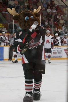 I love our hockey team...where else would there be a moose named Mortimer J. Moose as our mascot.  Only in moose jaw...GO WARRIORS