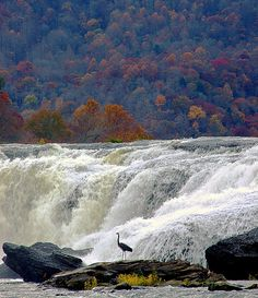 Sandstone Falls, West Virginia. I just love my homes state...so beautiful