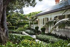 Garden of the week: A textured, layered Herne Bay garden with a touch of whimsy | Stuff.co.nz