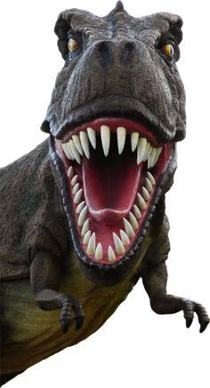 Animatronic T rex Dinosaur Animatronic Dinosaur_Shu Xi Ying Group animatronic dinosaur statue maker Festa Jurassic Park, Wallpaper Free, Dinosaur Wallpaper, Image Resources, Murals For Kids, Dinosaur Art, Png Photo, Prehistoric Creatures, Switch Plate Covers