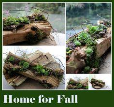 (7) Workshops Herfst 2015 Burlap Garland, Deco Nature, Deck Decorating, Low Maintenance Plants, High Art, Rustic Wall Decor, Echeveria, Rose Wedding, Garden Art