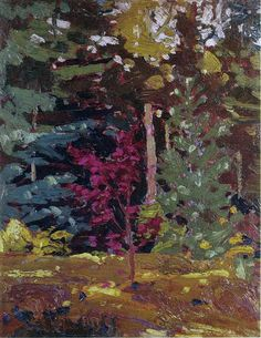 Tom Thomson Maple Sapling, Algonquin Park, Fall 1915 (wrong red) Group Of Seven Artists, Group Of Seven Paintings, Canadian Painters, Canadian Artists, Tom Thomson Paintings, Algonquin Park, Watercolor Trees, Canada, New Art