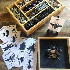 Nature Activities, Montessori Activities, Preschool Activities, Reggio Emilia, Diy For Kids, Crafts For Kids, Lacing Cards, Forest School, Letter A Crafts