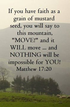 Matthew 17:20 (KJV)  20 And Jesus said unto them, Because of your unbelief: for verily I say unto you, If ye have faith as a grain of mustard seed, ye shall say unto this mountain, Remove hence to yonder place; and it shall remove; and nothing shall be impossible unto you.
