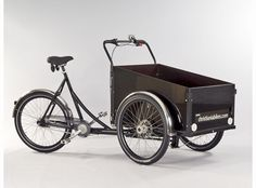 I have an adult trike that I absolutely love, but fantasize about having this cargo bike to bike both my kids around town in!