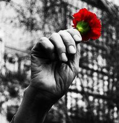 25 de abril - (Liberty Day - Portugal)