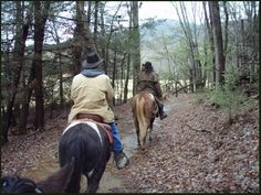 See the #Smokies in a whole new way! #Sevierville #attractions #fun #family #whattodo #vacation #Tennessee #horseback #riding