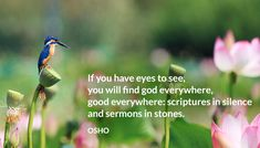 If you have eyes to see, you will find god everywhere, good everywhere: scriptures in silence and sermons in stones. OSHO  #eyes #find #god #everywhere #good #scripture #silence #sermons #stones #osho