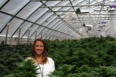 More Women Making Strides In The Colorado Marijuana Industry