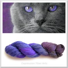 Expression Fiber Arts - NOT AMUSED - Limited Edition 100% Pure Cashmere Yarn - DK Wt. 180m/50g, $40.77 (http://www.expressionfiberarts.com/products/not-amused-limited-edition-100-pure-cashmere-yarn-dk-wt-180m-50g.html)