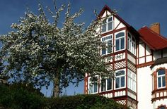 Villenviertel, Eisenach, Thüringen, Germany