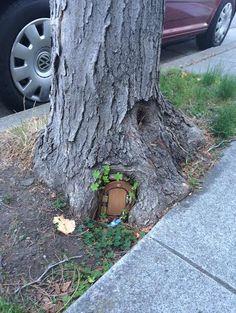 Fairy+Doors+For+Trees | fairy door tucked into the roots of a Berkeley tree. Photo: Lisa ...