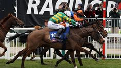 Synchronised Winning The Cheltenham Gold Cup In 2012