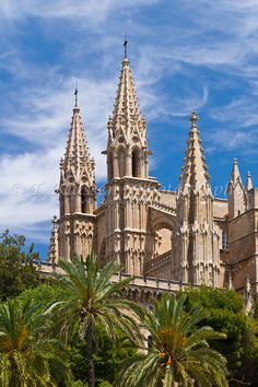 The Cathedral of Santa Maria of Palma in Palma de Mallorca, Spain.
