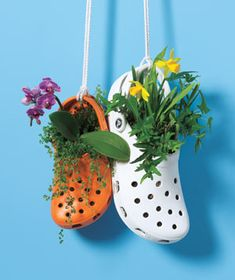 Garden Inspiration & Ideas {Over 50 Pots, Planters, and Containers Finally something I can do with old crocs!would be cute hanging on potting shed/tableFinally something I can do with old crocs!would be cute hanging on potting shed/table Recycled Planters, Recycled Garden, Hanging Planters, Garden Planters, Hanging Baskets, Diy Planters, Garden Crafts, Garden Projects, Garden Art