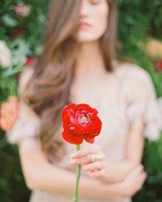 Jodi Miller Photography, bloom @hollychapple, model @jcfunkhouser, dress @shopgossamer